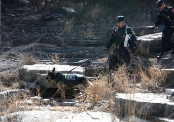 滨州保安巡逻时需要注意哪些特征的人员?